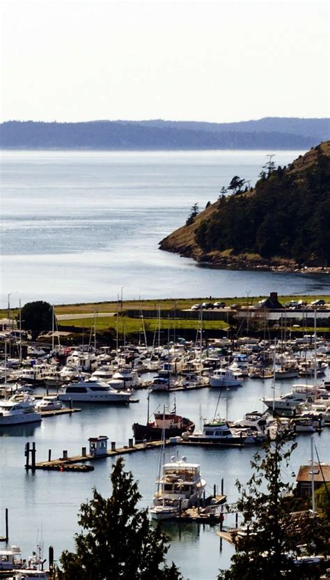 cruises from seattle 17 best images about cruises from seattle on