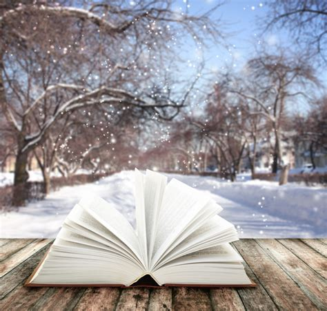 winter calling books snow is falling books are calling