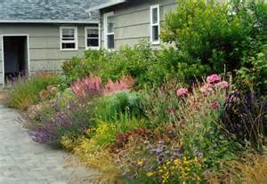 Anchorage Cottage by Boardwalk Cottages Tangly Cottage Gardening Journal