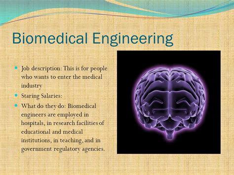 Biomedical Engineering Duties by The Six Disciplines Of Engineering Ppt