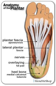 Can Foot Detox Help With Plantar Fasciitis by Plantar Fasciitis This Link Provides Both Information