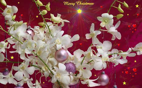 wallpaper christmas laptop christmas desktop backgrounds wallpaper 269499