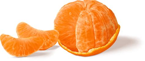 can dogs eat mandarin oranges image gallery halos oranges