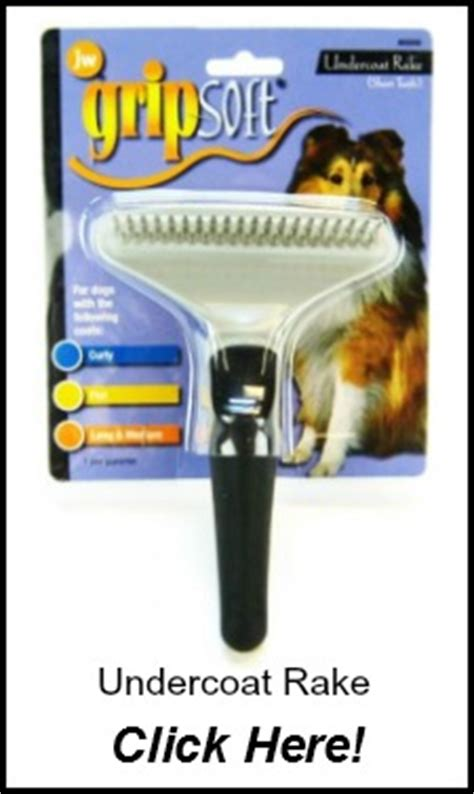 undercoat rake golden retriever golden retriever grooming grooming dogs