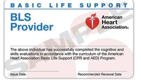 pals provider card template cpr classes sacramento modesto stockton