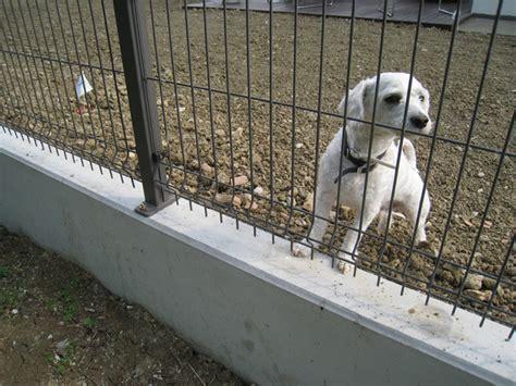 muretti prefabbricati per giardino mobili e arredamento muretti di recinzione in cemento