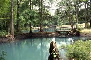 florida caverns state park reviews tips activities