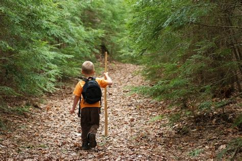 The Prepper Road Compendium going trail new paths in programming to connect