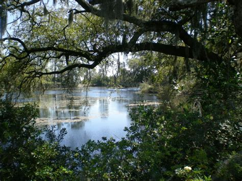 Airlie Gardens Wilmington by Airlie Gardens Wilmington Nc Top Tips Before You Go