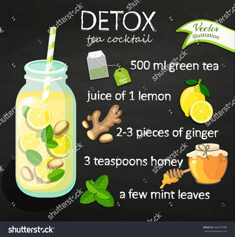 Green Tea And Lemon Detox Recipe by Recipe Detox Cocktail Green Tea Lemon 스톡 벡터 564977386