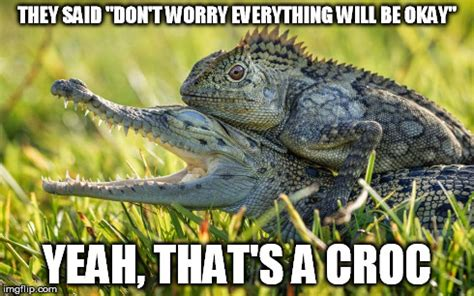 Reptile Memes - reptilian meme 28 images when you re a reptilian and