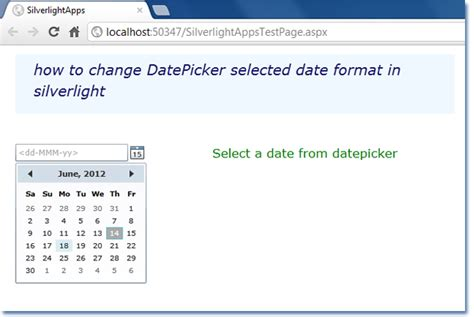 format date linq silverlight how to change datepicker selected date format