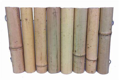 canisse en bambou 7198 canisse bambou epais diam 3 3 5 cm jardin canisse