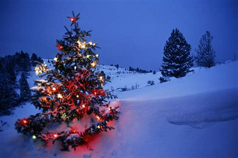 images of christmas snow snowfall on christmas day travel news