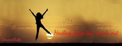 healing the from the inside out books healing from the inside out fi jamieson folland