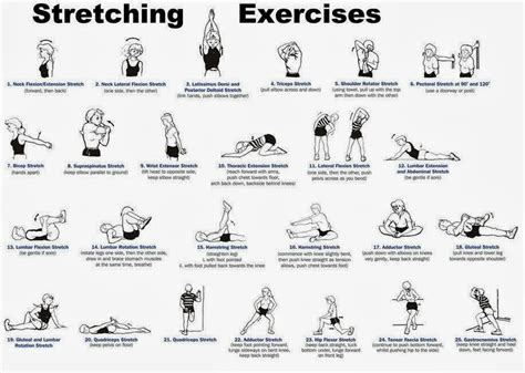 weight loss exercise plan at home 10 exercises that you can do at home to lose weight
