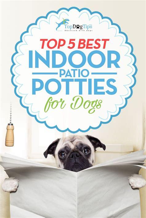 indoor dog bathroom solutions best indoor pet patio potty for dogs top 5 dog toilet