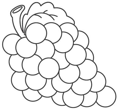imagenes uvas para pintar dibujos de uvas para pintar