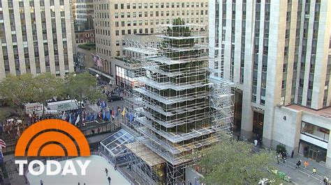 when do they remove rockefeller christmas tree the 94 foot rockefeller center tree arrives by truck today