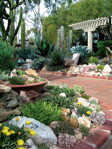 Succulent Garden Ideas Succulent Rock Garden On