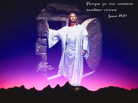 ver imagenes de jesucristo resucitado una mirada diferente resucit 211