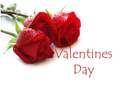 valentines day events valentines day dinner capalaba sports club