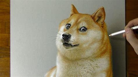 wow doge dog meme  drawing youtube
