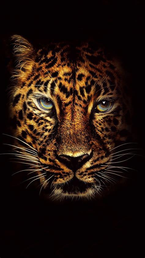 jumanji movie ringtone free jaguar in jumanji welcome to the jungle phone