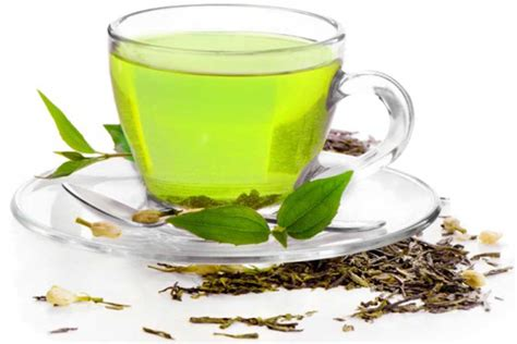 Teh Green Tea why you should drink green tea weight loss better