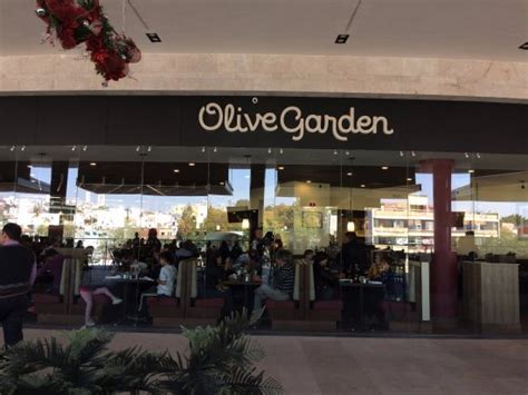 olive garden queretaro city picture of olive garden queretaro city tripadvisor