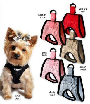 best harness for small dogs 19 best images about walking your small on vests small breed dogs and