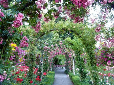 il giardino te giardino fai da te fai da te in giardino come fare un