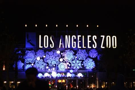 Discount Tickets To See La Zoo Lights Socal Field Trips Discount Tickets For Zoo Lights