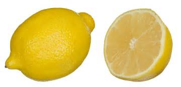 lemon photo ingredient of the season lemons