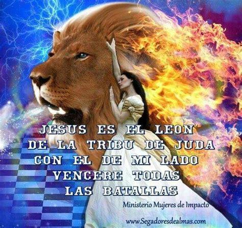 imagenes con leones cristianas jesus es el leon de la tribu de juda frases cristianas