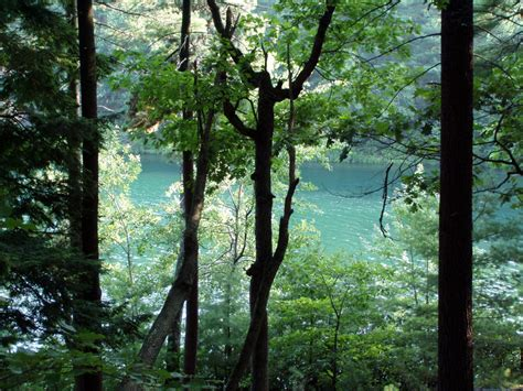 of walden walden pond state reservation concord ma