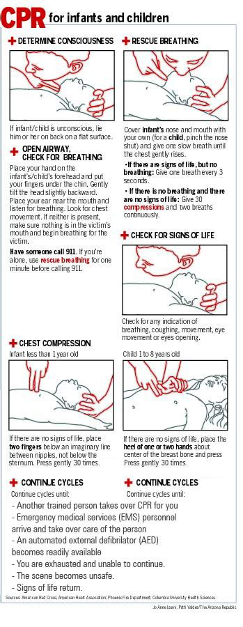 printable choking instructions animal cpr diagrams cpr instructions jpg kootation com