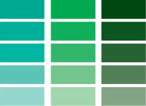 colors that go with green inspired whims a color study green
