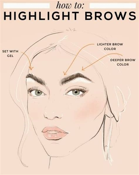 how to color in your eyebrows 17 best ideas about arched eyebrows on eyebrow