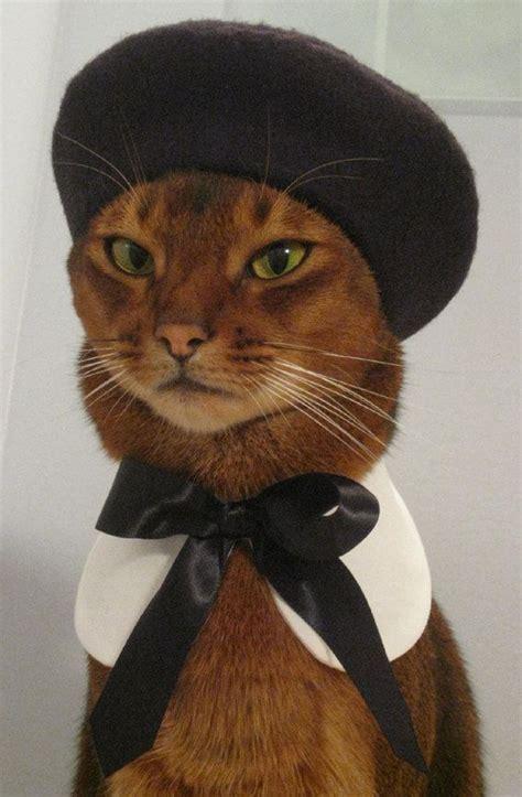 Cat Beret Hat catatelier hats black felt beret cats