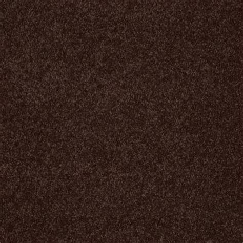 home decorators collection cressbrook iii s color jamocha 15 ft carpet hda060tx19 the
