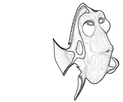 dory fish coloring page dory fish avondale style