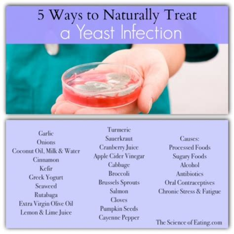 Can Yeast Infections Happen After A Detox by Foods To Help Health Issues