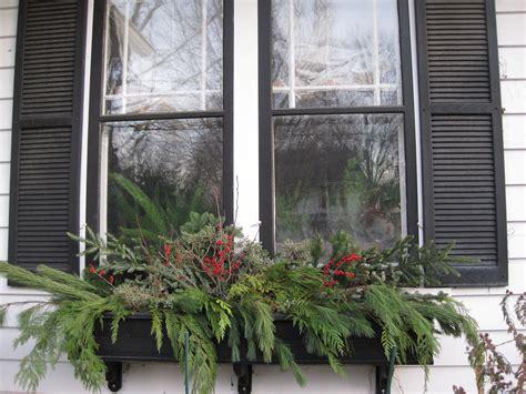 window box ideas for winter winter window boxes mel s green garden