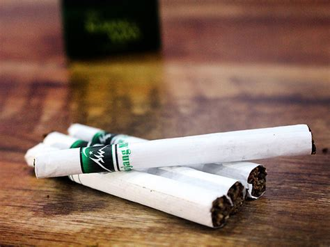 Rokok Herbal Tsi Kujang berbagi bersinergi pt tridaya sinergi indonesia