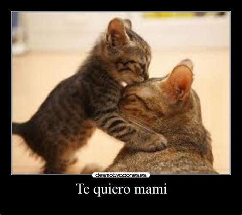 imagenes te quiero mami te quiero mami frases de amor imagenes bonitas