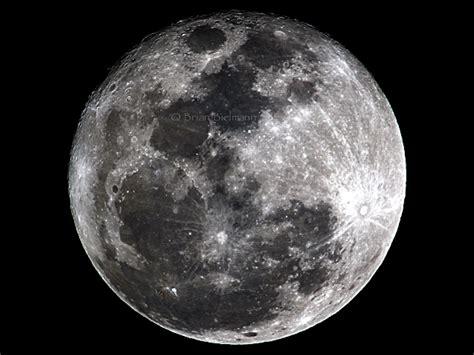 Who Is Moon Moon Of March 2011 171 Brian Bielmann S