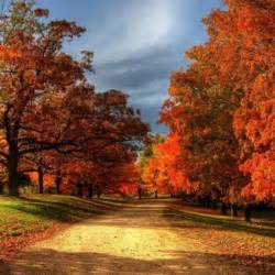 fall colors fall foliage map 2017 nationwide peak leaf forecast