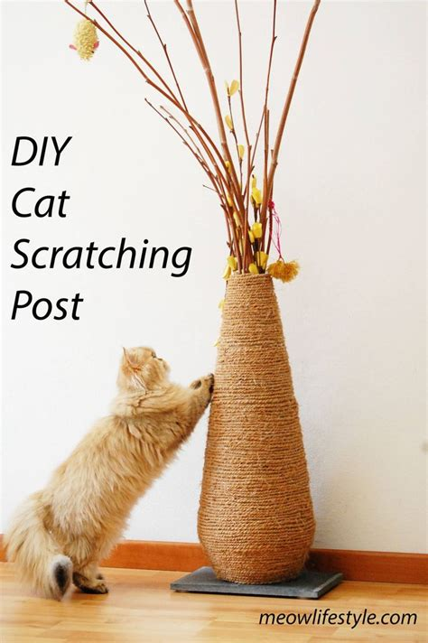 Diy Cat Toys From Marmalade by 11561 Best Diy Cat Ideas Images On Cats