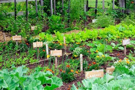 vegetable gardening   resilient community  advanced
